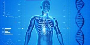 Beschwerdefrei in 9 1/2 Wochen – das Rückenkonzept von KretaVital
